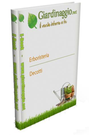 Il Verde intorno a Te - Erboristeria, decotti, tisane, infusi, succhi (4 Volumi in uno)