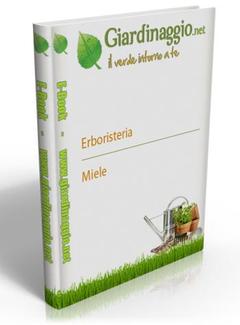 Il Verde Intorno a te - Miele (2013)